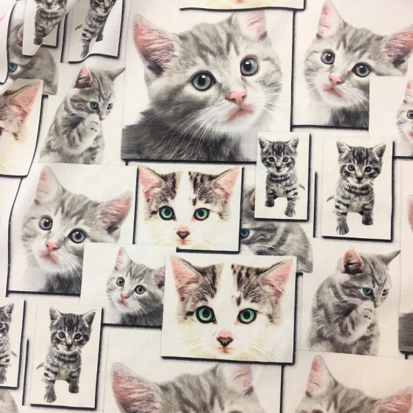 100% Cotton Cats DESIGN 2