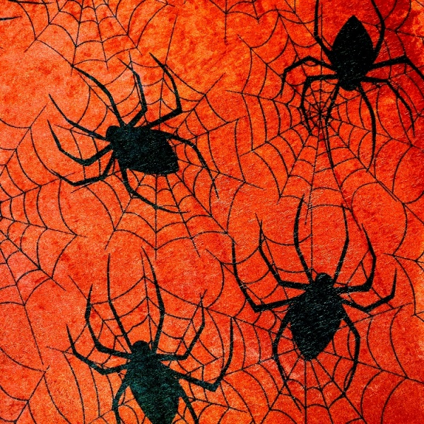 Halloween RED SPIDERWEB VELVET