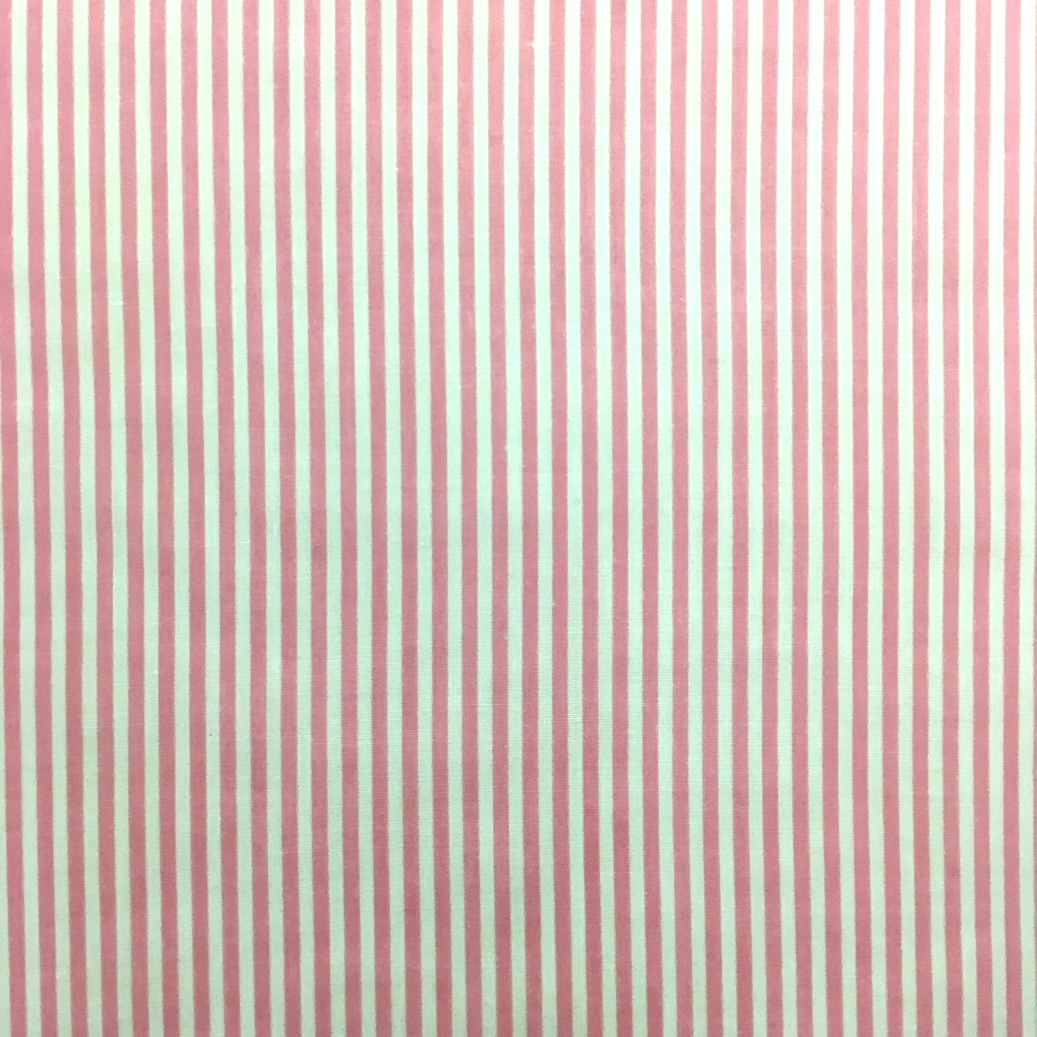 2mm Stripe PINK